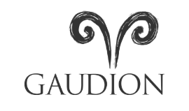 Read Gaudion Furniture Reviews