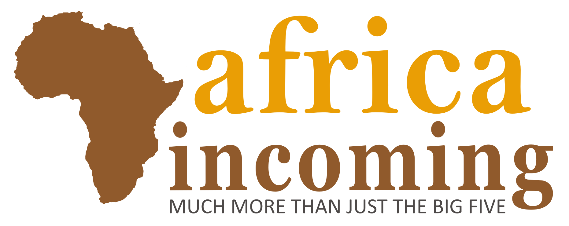Read Africa Incoming Pty Ltd Reviews