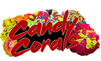 Read Candy Corals Reviews